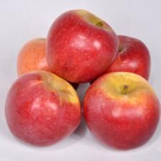 Яблоки вес