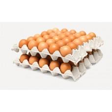 Яйцо куриное  с-о термо 30шт